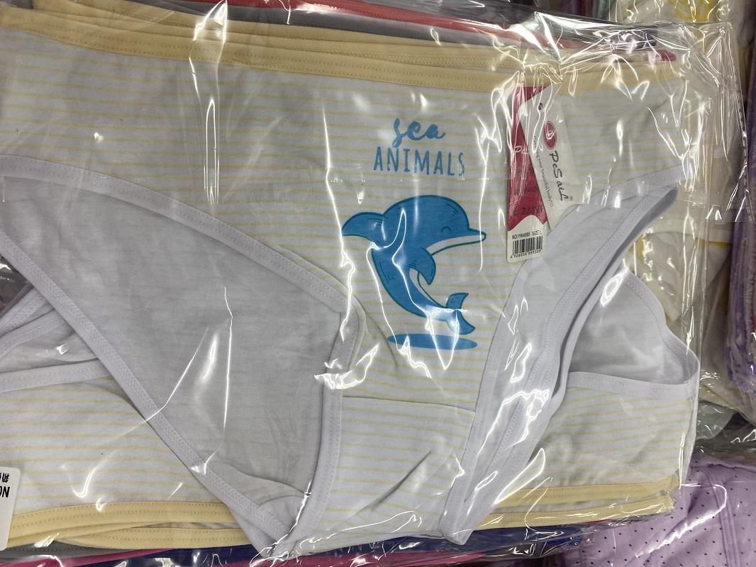Dámské spodní kalhotky FANNIFEN (M-2XL)